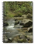 Big Pup Falls 2 Spiral Notebook