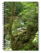 Big Pupfalls 4294 Spiral Notebook