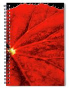 Big Red Spiral Notebook