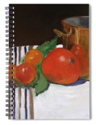 Big Red Tomato Spiral Notebook