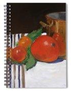 Big Red Tomato Spiral Notebook