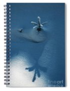 Big Shadow Of A Small Tree On The Snow Spiral Notebook