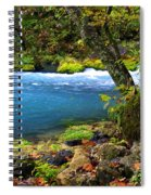 Big Spring Spiral Notebook