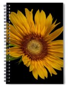 Big Sunflower Spiral Notebook