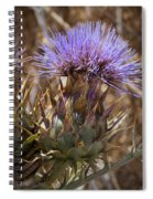 Big Thistle 2 Spiral Notebook