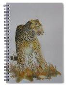 Big Tom Spiral Notebook