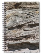 Big Tree 5 Spiral Notebook