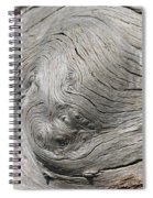 Big Tree 6 Spiral Notebook