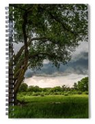 Big Tree - Tall Cottonwood And Storm In Texas Panhandle Spiral Notebook