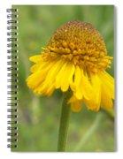 Bigelow Spiral Notebook