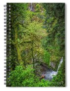 Bigfoot Country Spiral Notebook