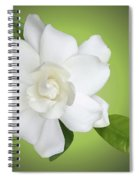 Billie's Flower Spiral Notebook