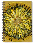 Billy Jean -- Floral Disk Spiral Notebook