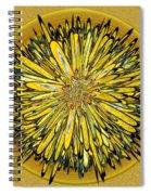 Billy Jean -- Floral Disk Spiral Notebook