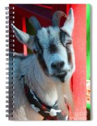 Billy Spiral Notebook