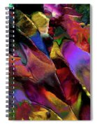 Binary Star System Spiral Notebook