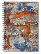 Biography Of A Wall 17 Spiral Notebook