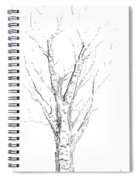 Birch Abstraction Study Spiral Notebook