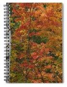 Birch And Maple Spiral Notebook