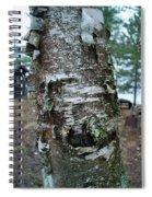 Birch Bark 3 Spiral Notebook