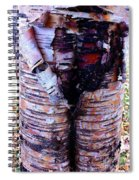 Birch Bark Closeup Spiral Notebook