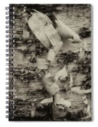 Birch Bark Detail Monotone Img_6361 Spiral Notebook