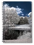 Birch Cluster II Spiral Notebook
