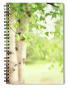 Birch In Spring Spiral Notebook