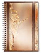 Birch Peel Tryptich Spiral Notebook