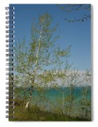 Birch Tree Over Lake Spiral Notebook