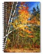 Birch Trees - Autumn Spiral Notebook