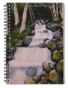 Birch Trees By The Brook Spiral Notebook