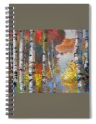Birch Trees By The Lake Spiral Notebook