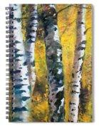 Birch Trees In Golden Fall Spiral Notebook