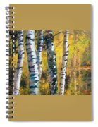 Birch Trees In Golden Fall Spiral Notebook