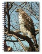 Birched Cooper 2 Spiral Notebook