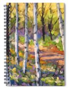 Birches 02 Spiral Notebook