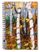 Birches 03 Spiral Notebook