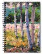 Birches 04 Spiral Notebook