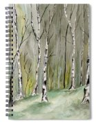 Birches Before Spring Spiral Notebook