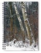 Birches During A Snowfall Spiral Notebook