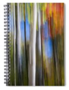 Birches In Autumn Forest Spiral Notebook