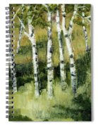Birches On A Hill Spiral Notebook