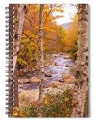 Birches On The Kancamagus Highway Spiral Notebook
