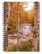 Birches On The Kancamagus Highway Spiral Notebook