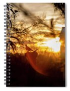 Bird At Sunset Color Spiral Notebook