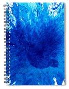 Bird Bath 3 Spiral Notebook