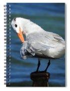 Bird Spiral Notebook