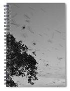 Bird En Route Spiral Notebook