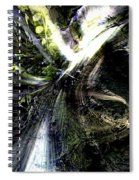Bird Flight With Olive Branch Spiral Notebook